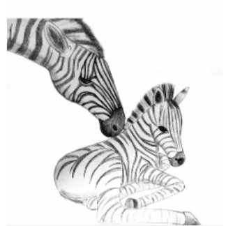black and white zebra sketch of mommy and baby