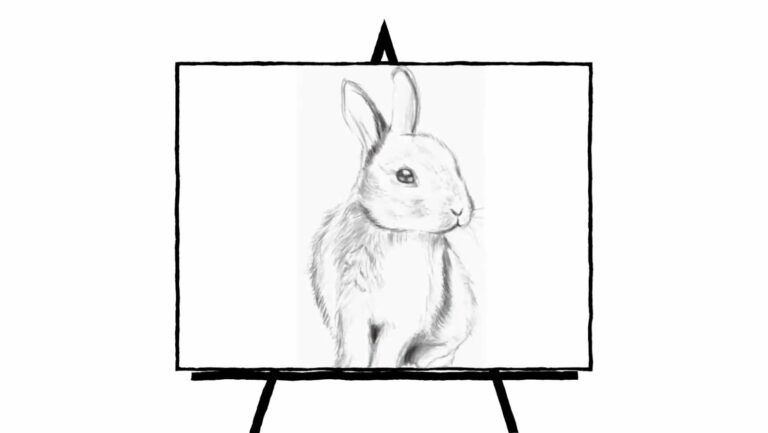 sketch of a rabbit in pencil